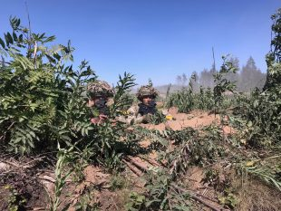 Soldiers look on from a defensive position during the multi-national Exercise Saber Strike in Estonia, involving around 18,000 personnel from 19 different countries.