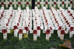 Small wooden crosses with poppies attached in rows