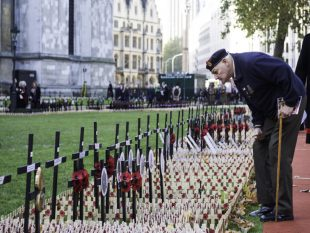 A Veteran from the Royal Army Medical Corps searches for names amongst the crosses.