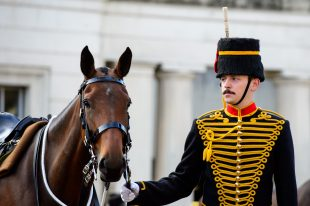 A soldier from the Kings Troop Royal Horse Artillery with a horse