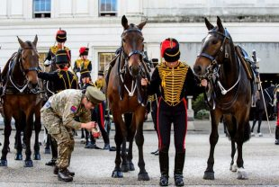Final preparations are made before the Kings Troop Royal Horse Artillery leave Wellington Barracks.